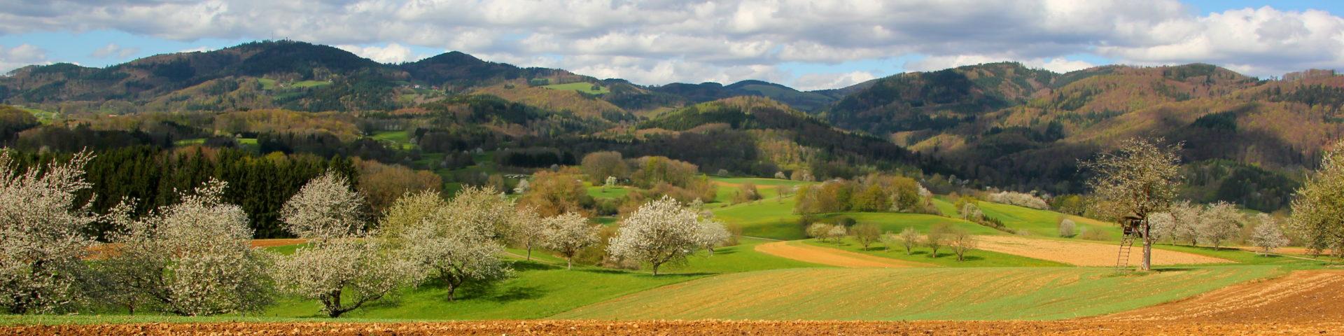Dinkelberg und Südschwarzwald